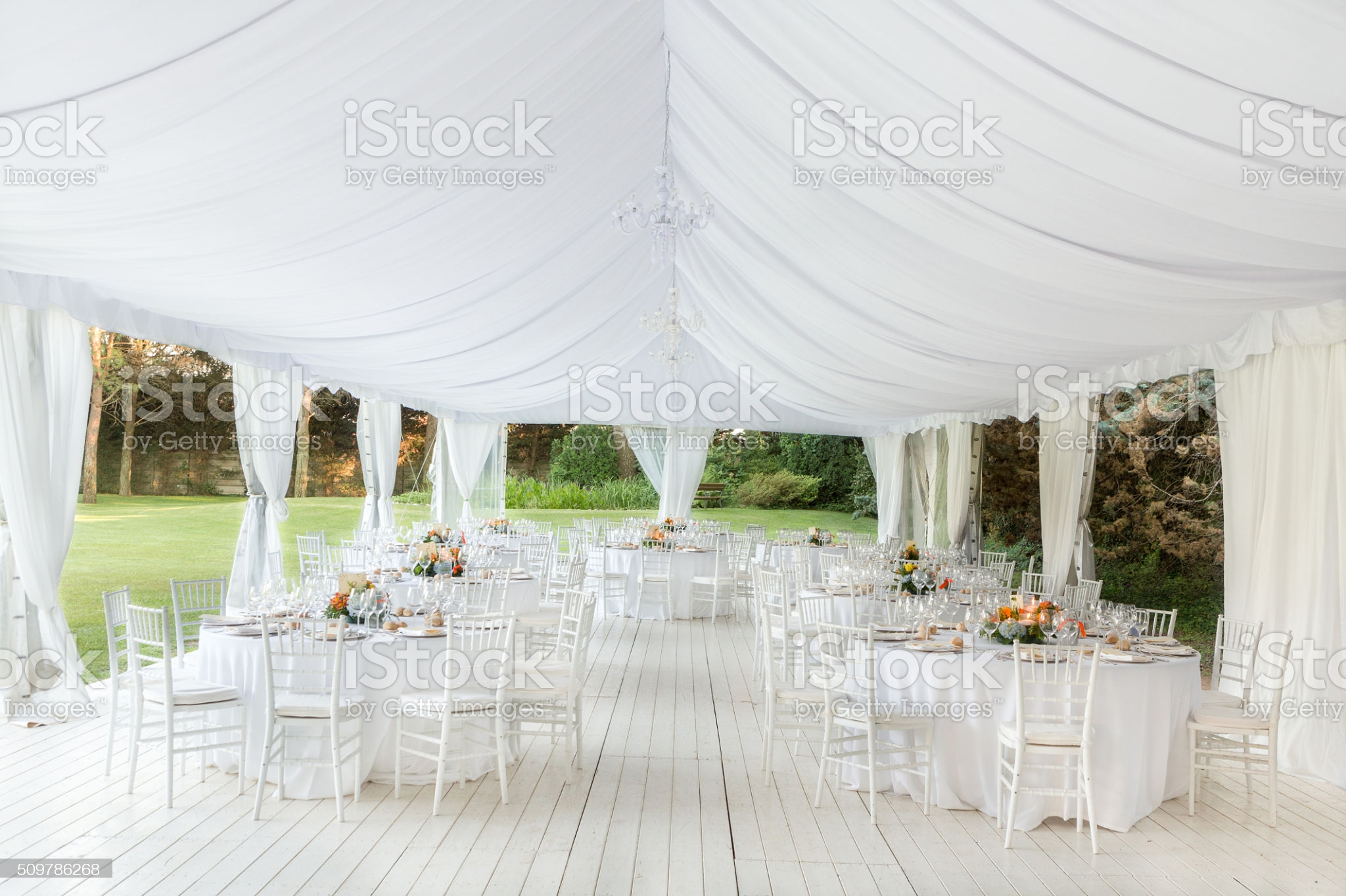 Marquee and canopy